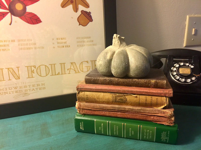 Pumpkins and Mushrooms - One Bag Wonder Contest Entries