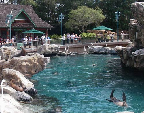 Sea World Pacific Point Preserve Project Profile